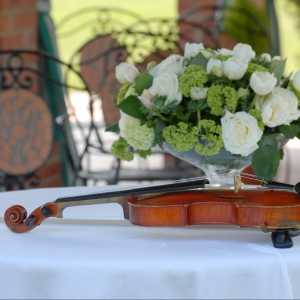 Wedding Music & Song