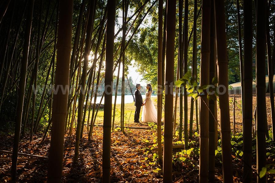 Mirna & Rami Wedding in Tuscany
